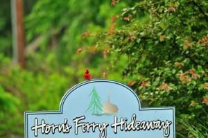 cardinal-on-sign-horns-ferry-hideaway