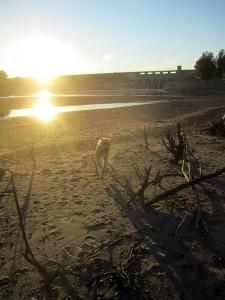sunset-below-lake-red-rock-dam-labrador-running-horns-ferry-hideaway